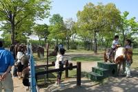 乗馬コーナー