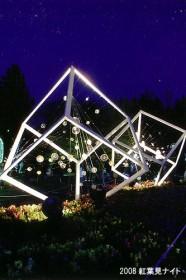 2008紅葉見ナイト