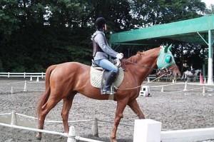 体験乗馬に挑戦