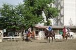 狭山乗馬センター