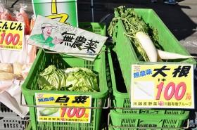 川越有機野菜(大根、白菜)