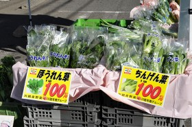 川越有機野菜(ちんげん菜、ほうれん草)
